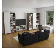 Гостиная-библиотека Идея #2