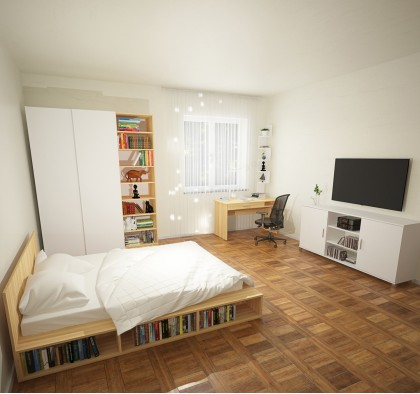 Спальня-гостиная Идея #5