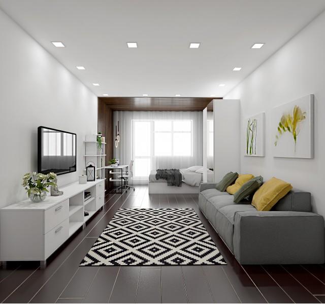 Гостиная-спальня Идея #9