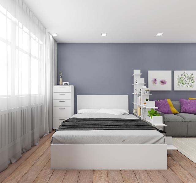 Спальня-гостиная Идея #11